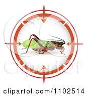 Locust In A Target Viewfinder 1
