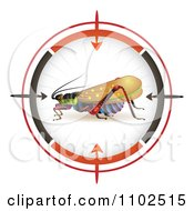 Clipart Locust In A Target Viewfinder 2 Royalty Free Vector Illustration by merlinul