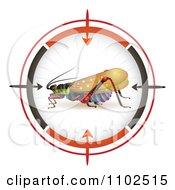 Locust In A Target Viewfinder 2