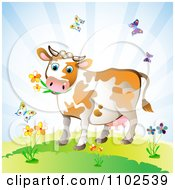 Clipart Cow Eating Flowers And Surrounded By Butterflies Royalty Free Vector Illustration by merlinul