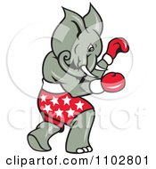 Republican Elephant Boxer With Star Shorts
