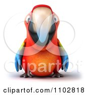 Clipart 3d Macaw Parrot Royalty Free CGI Illustration by Julos