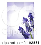 Clipart 3d Lavender Flowers Over Purple Flares With White Edges Royalty Free Vector Illustration by elaineitalia