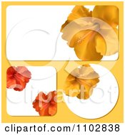 Rectangular Square And Round Hibiscus Flower Frames On Yellow