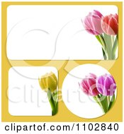 Rectangular Square And Round Tulip Flower Frames On Yellow