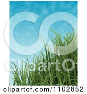 Clipart 3d Green Grass Blades Against A Sky With Faint Clouds Royalty Free CGI Illustration