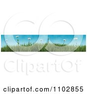 Clipart 3d Border Of Wild Daisies And Grass Against A Blue Sky Royalty Free CGI Illustration