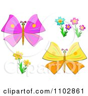 Pink And Yellow Butterflies And Flowers