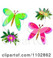 Green And Pink Butterflies And Flowers