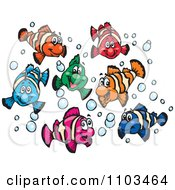 Clipart Happy Colorful Clownfish With Bubbles Royalty Free Vector Illustration