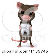 3d Mouse Holding A Tooth 1