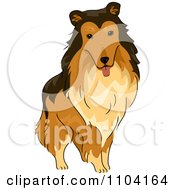 Clipart Happy Collie Dog Royalty Free Vector Illustration by BNP Design Studio