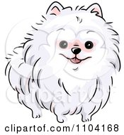 Clipart Happy White Pomeranian Dog Royalty Free Vector Illustration