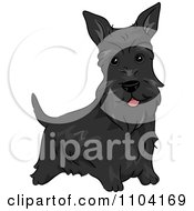 Clipart Happy Black Scottish Terrier Dog Royalty Free Vector Illustration