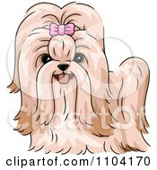 Clipart Happy Shitzu Dog With A Pink Bow Royalty Free Vector Illustration