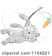 Clipart Gray Rabbit Chasing A Carrot On A Stick Royalty Free Vector Illustration