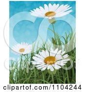 Clipart 3d White Daisies And Blades Of Grass Against A Cloudy Sky Royalty Free CGI Illustration