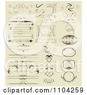 Clipart Ornate Rules Borders Dividers Frames And Design Elements On Beige Royalty Free Vector Illustration