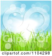 Blue Spring Sky And Grass Background With Flares Of Light
