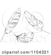 Clipart Three Black And White Bird Feathers Royalty Free Vector Illustration by Vector Tradition SM