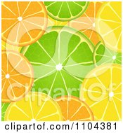 Orange Lime And Lemon Slice Background