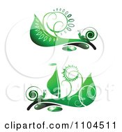 Ornate Swirl Leaves And Snails Design Elements 2