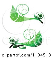 Ornate Swirl Leaves And Snails Design Elements 4