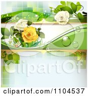 Rose Background With Dew Drops And Green Tiles