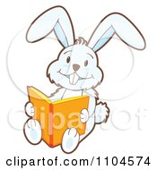 Happy White Rabbit Sitting And Reading A Story Book