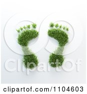 Clipart 3d Grassy Foot Prints Royalty Free CGI Illustration