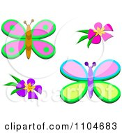Two Butterflies And Flowers