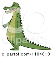 Clipart Gator Standing In Profile With His Hands Fisted Royalty Free Vector Illustration