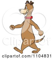 Happy Brown Dog Walking Upright In Profile