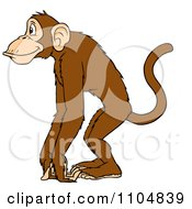Clipart Happy Monkey In Profile Royalty Free Vector Illustration