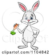 Happy Rabbit Holding A Carrot And Standing Upright