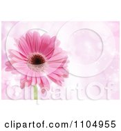 Clipart Pink Daisy Flower Over Sparkles With Copyspace Royalty Free Vector Illustration