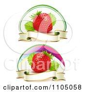 Ripe Red Strawberries With Blank Banner Ribbons