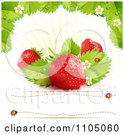 Strawberry Background With Leaves Blossoms And Copyspace 2 by merlinul