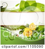 Green Leaf Background With A Ladybug Dew And Roses