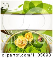 Green Leaf Background With A Butterfly And Roses