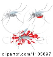 Clipart Three Mosquitos One With A Blood Belly And One Squished Royalty Free Vector Illustration