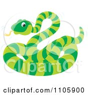 Clipart Cute Green Snake With A Ring Pattern Royalty Free Vector Illustration