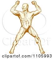Clipart Muscular Body Builder Man Flexing Royalty Free Vector Illustration