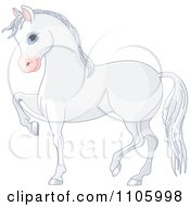 Cute White Horse Prancing In Profile