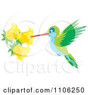 Green And Blue Hummingbird Sucking Nectar From Yellow Bell Flowers