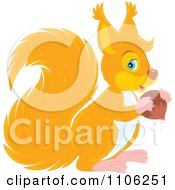 Clipart Cute Orange Squirrel Holding An Acorn Royalty Free Vector Illustration by Alex Bannykh