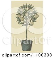 Clipart Woodcut Styled Potted Apple Tree Royalty Free Vector Illustration by Any Vector
