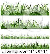 Clipart Four Lawn Grass Borders At Different Lengths Royalty Free Vector Illustration by dero