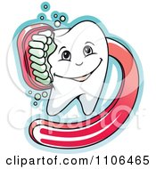 Clipart Happy Dental Tooth Being Scrubbed With A Red Brush Royalty Free Vector Illustration