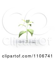 Clipart 3d Seedling Plant Growing From A Fissure Royalty Free CGI Illustration